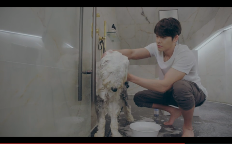 kim woo bin washing dog uncontrollably fond